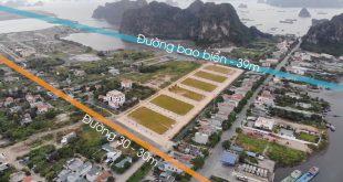 dự án cẩm đông ocean park
