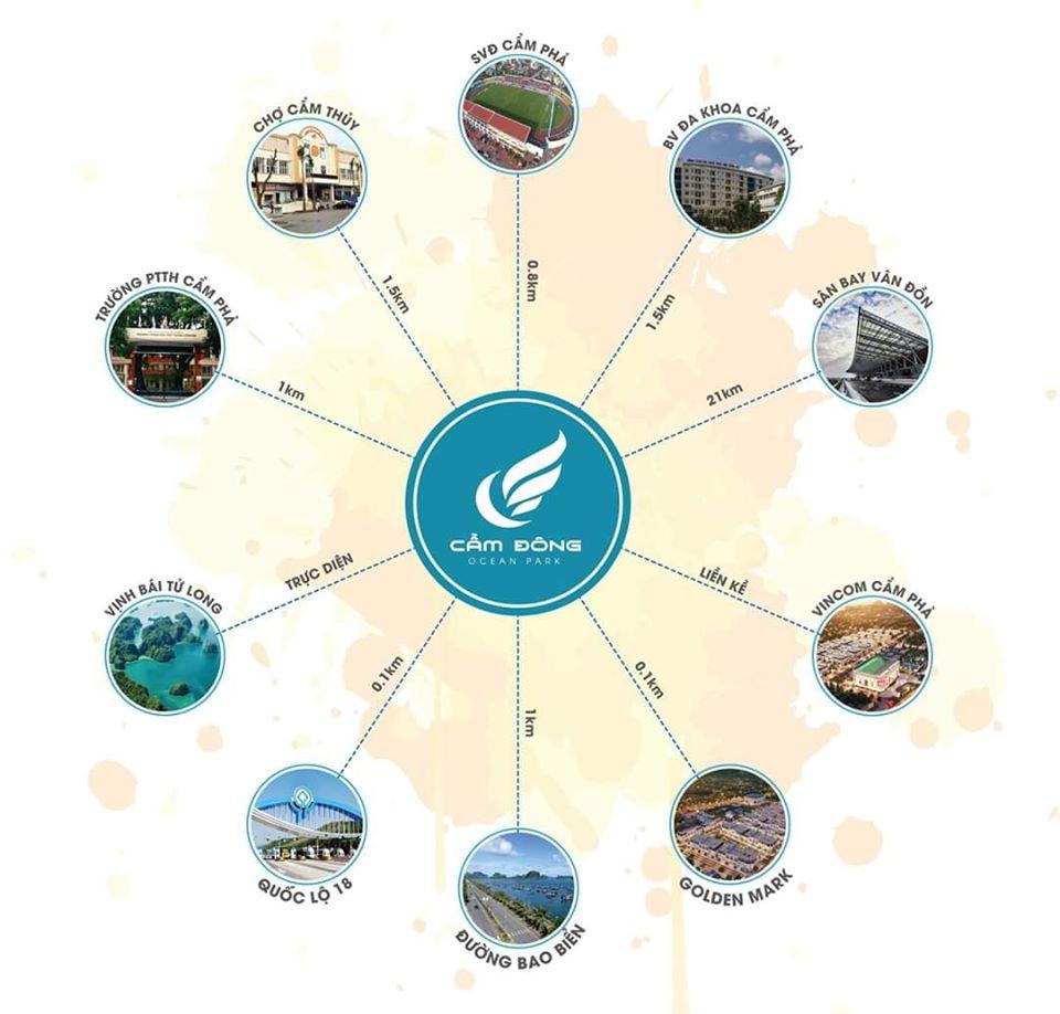 liên kết vùng dự án cẩm đông ocean park