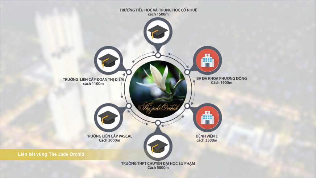 liên kết vùng dự án the jade orchid