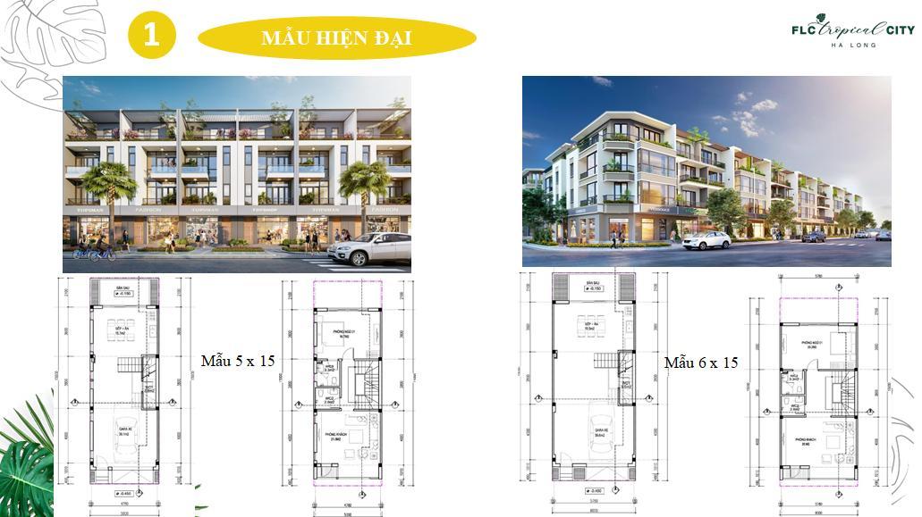 thiết kế shophouse flc tropical city