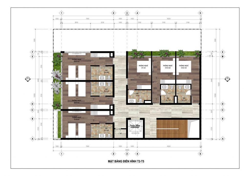 thiết kế minihotel flamingo tầng 2-5