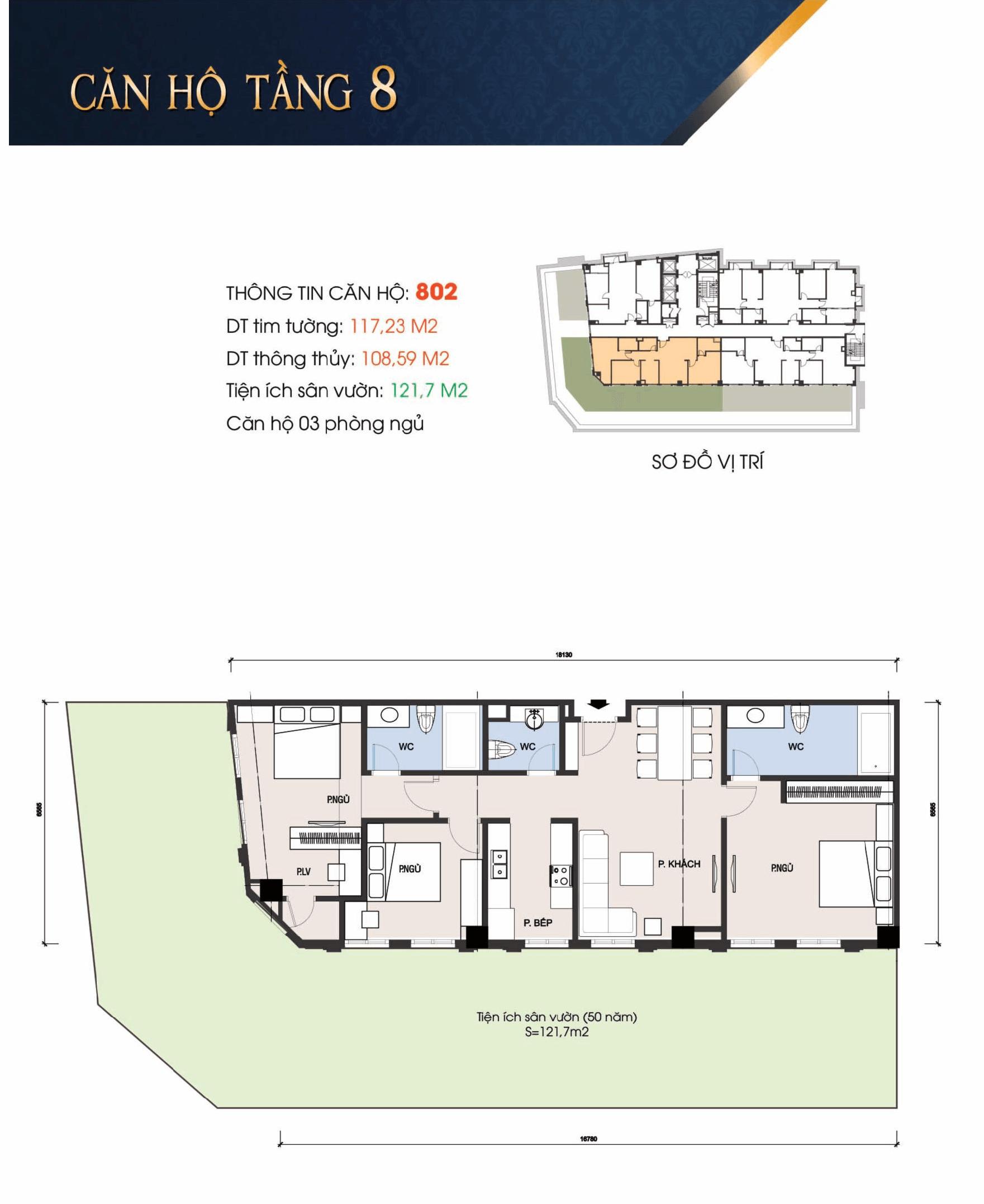 thiết kế t-place căn 802