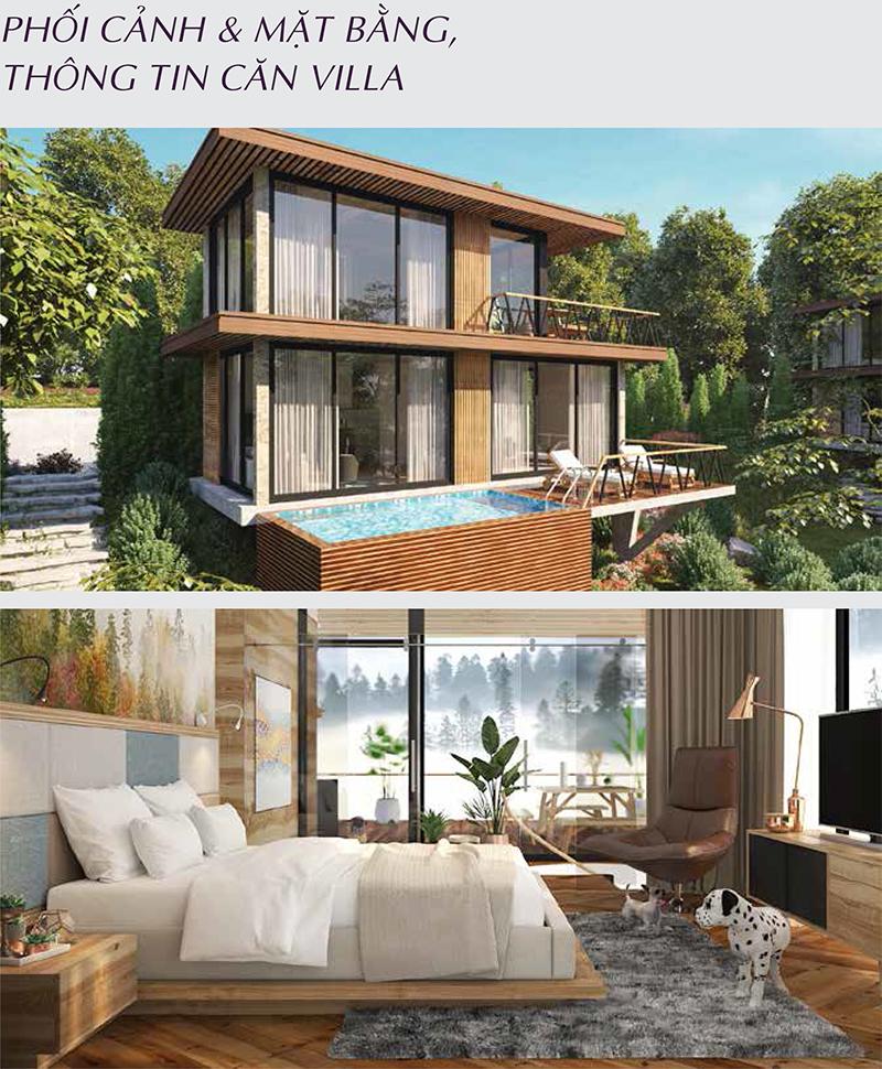 villa long thành hòa bình luxury resort